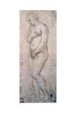 Study of Venus  C1500-1520