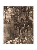 Nomads  1903