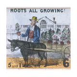 Roots All Growing!  Cries of London  C1840