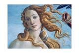 The Birth of Venus (Detail), C1485 Giclée par Sandro Botticelli