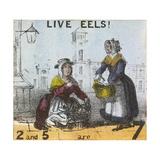 Live Eels!, Cries of London, C1840 Giclée par TH Jones