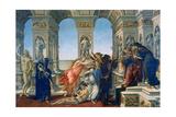 Calumny of Apelles  1497-1498