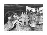 Crushing the Cane  1886