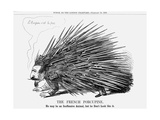 The French Porcupine  1859