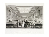 The Zoological Gallery  British Museum  Holborn  London  C1850