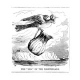 The Jug of the Nightingale  1854