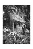 Alexander Von Humboldt and Aimé Bonpland on the Orinoco River  1800-1804