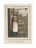 Strawberries  Cries of London  1804