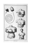 Breast Surgery  1751-1777
