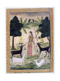 Todi Ragini  Ragamala Album  School of Rajasthan  19th Century