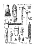 Neolithic Implements of Stone  Flint and Horn  C1890