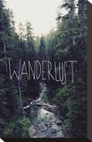 Wanderlust: Rainier Creek