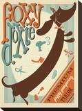 Foxy Doxie