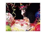 Happy Birthday Chessie!