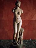 The Venus Tauride or Venus of Tauris  2nd Century Ad