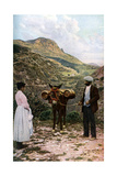 Mule with Water Kegs, Sicily, Italy, C1923 Giclée par AW Cutler