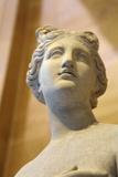 The 'Heritage' Venus  Italian  19th Century