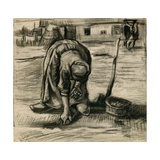Peasant Woman Planting Potatoes