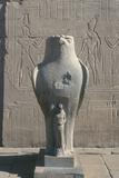 Giant Statue of the Ancient Egyptian Falcon-Headed God Horus  Edfu  Egypt