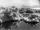 The 'Terra Nova' in Mcmurdo Sound, Antartica, 1911 Papier Photo par Herbert Ponting