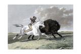 North American Indian Hunting Buffalo  1861