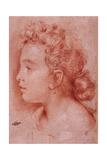 Portrait of Faustina Maratti