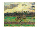 The Meadows at Éragny  Apple Tree  1894