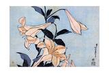 Lilies  C1830