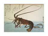 Lobster and Shrimps  1832-1834