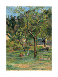 An Orchard under the Church of Bihorel  1884