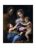 The Madonna of the Rose (Madonna Della Ros)  C 1520
