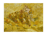 Quinces  Lemons  Pears and Grapes  1887-1888