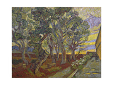 The Garden of Saint Paul's Hospital, 1889 Giclée par Vincent Van Gogh