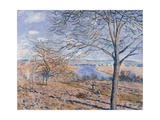 Banks of the Loing - Autumn Effect  1881