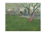 Orchards in Blossom  View of Arles  1889