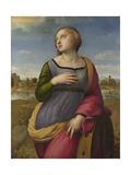 Saint Catherine of Alexandria  Ca 1507