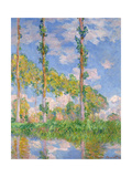 Poplars in the Sun  1891