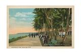 Borinquen Park  Near San Juan  1909
