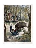 A Hunter Killed by a Wild Boar  1901