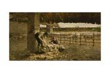 The Sheepshearing  1883-1884