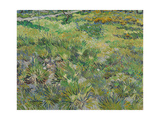 Long Grass with Butterflies  1890