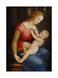 Madonna D'Orleans  Ca 1506-1507