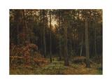 Pinewood  1885