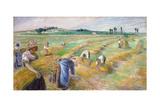 The Harvest  1882