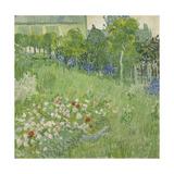 Daubigny's Garden, 1890 Giclée par Vincent Van Gogh