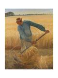 The Harvest  1885