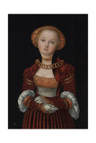 Portrait of a Woman  C 1525