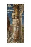 Saint Sebastian  Ca 1459