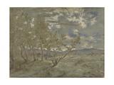 Landscape  Ca 1865