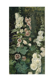 Hollyhocks  1872